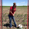 Water Resources 2016 Summer Intern collecting soil samples