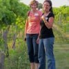 Women standing  in vineyard